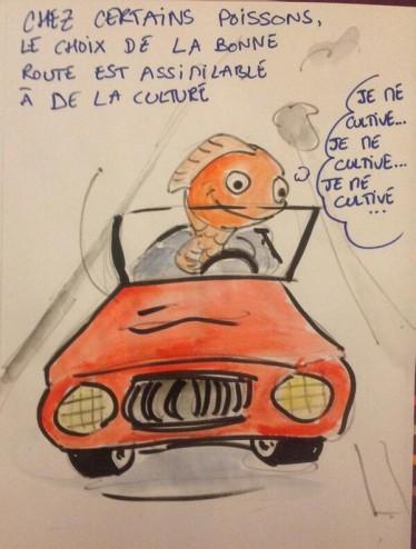 2013-05-09-19-30-50-la-culture-automobile-chez-certains-poissons-ps130-podcastscience