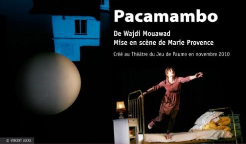 pacamambo_p1